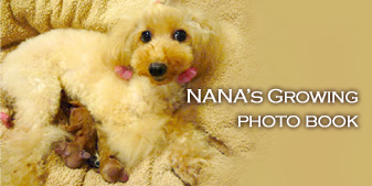 NANA's growing photo book